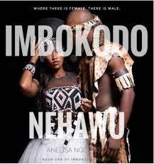 Imbokodo Nehawu by Anelisa Ngcobo