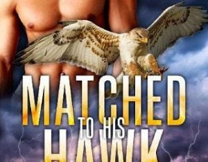MATCHED TO HIS HAWK BY LORELEI M. HART