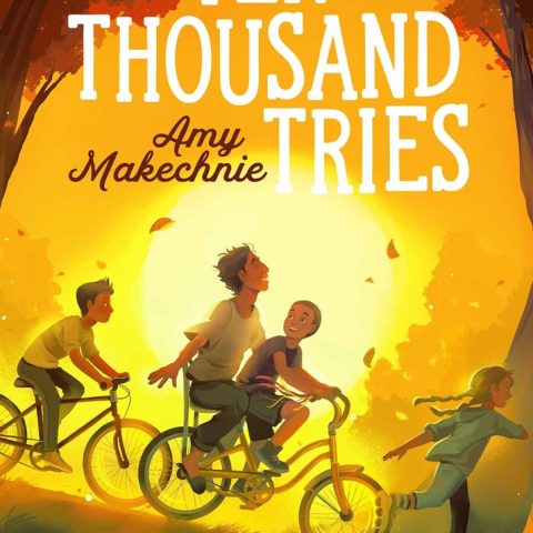 Ten Thousand Tries by Amy Makechnie