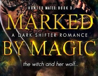 MARKED BY MAGIC BY CHRISTA WICK